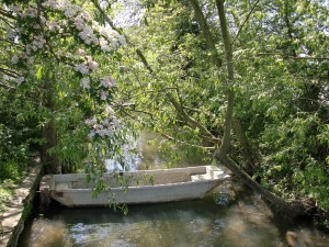 Isis Towpath_tranquil brook