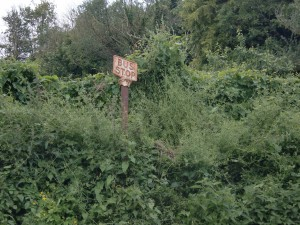 Stanton Harcourt Bus stop