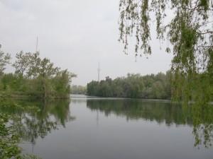 TOronto IslandPark