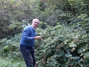 Aston's Eyot - blackberry thief