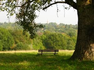 best_parks2