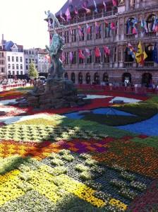 flowers Antwerp